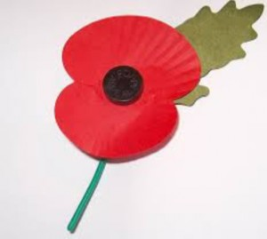 Veterans Day: Buddy Poppy Time