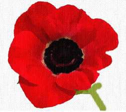 Veterans Day Buddy Poppy distribution.