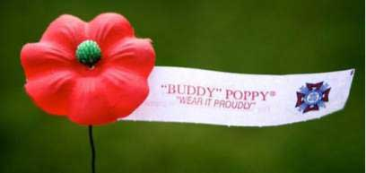 Veterans Day Poppy Planning
